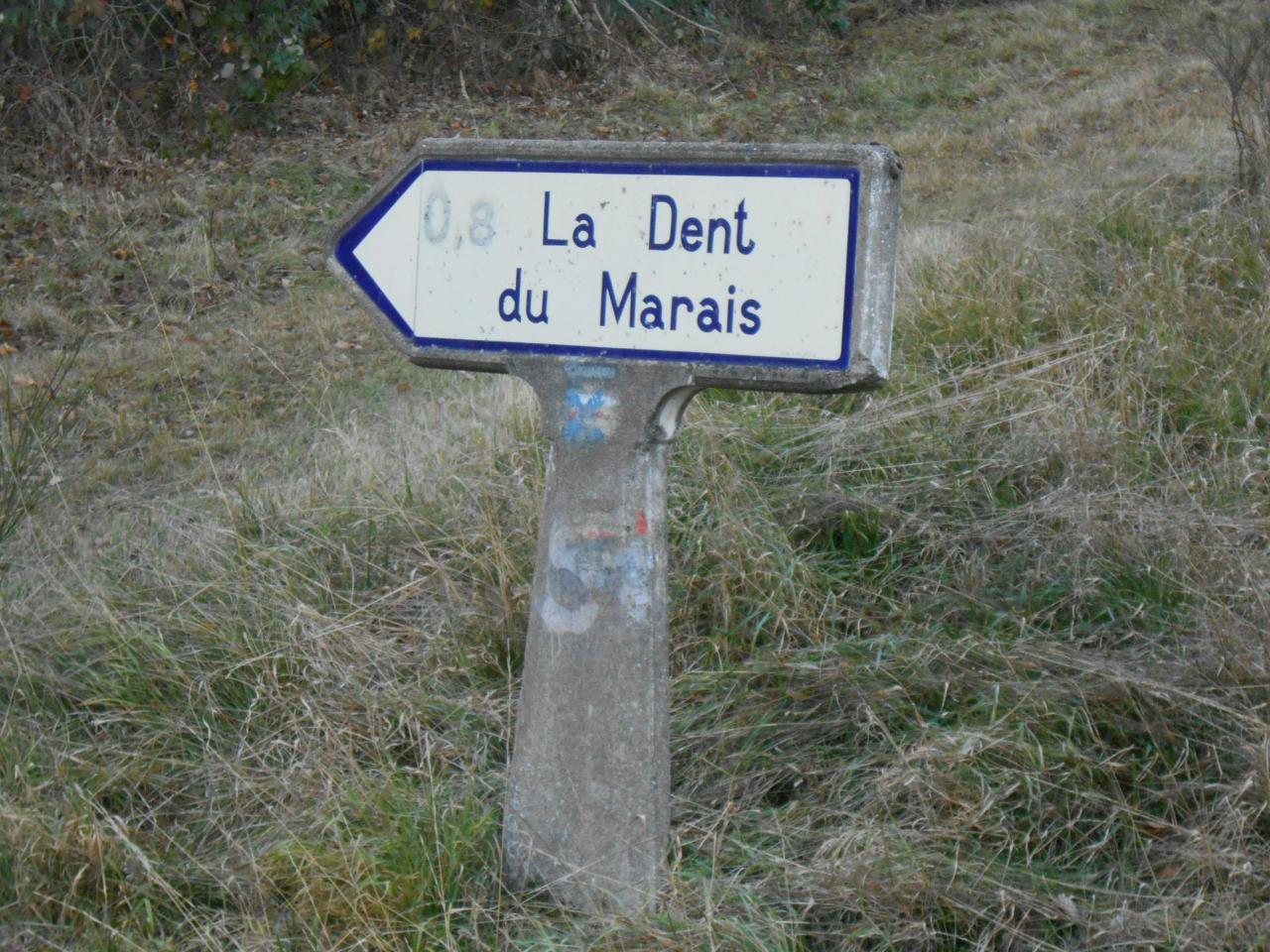 63790 Sur D5 aprés Murol(2)